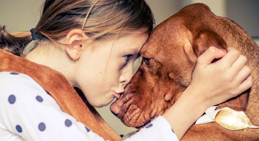 A criança aos olhos de um cão