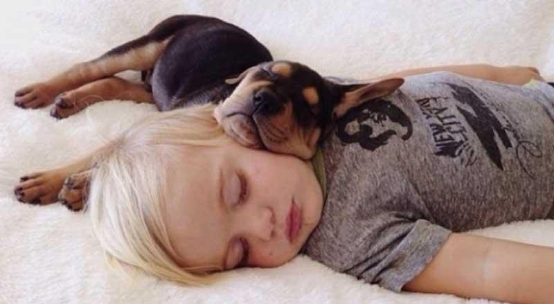 Na infância, um sono de qualidade assume um papel primordial, pois para além de ser importante para a recuperação das funções biológicas e para o crescimento corporal